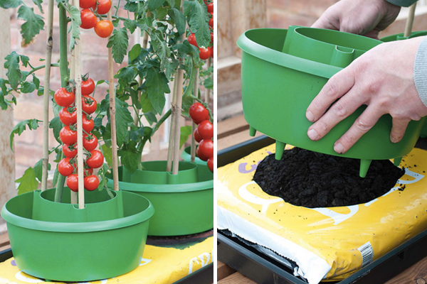 Вижте: https://www.harrodhorticultural.com/cache/product/615/615/tomato-plant-halos-3-2019117171.jpg